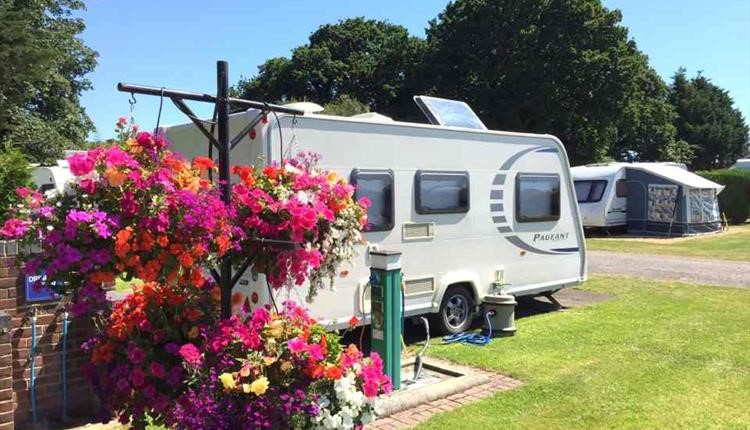 Caravan parked up on one of the sites pitches with colourful flowers surrounding it