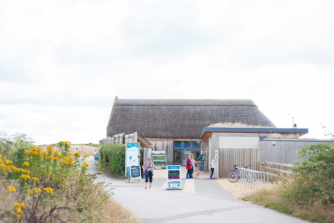 Visitors enjoying the Hengistbury Head visitor centre on a clear day