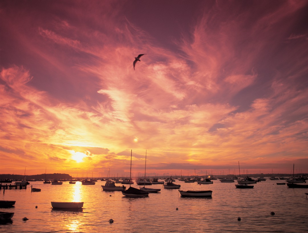 A sunset over bobbing boats in Poole Harbour on a calm evening