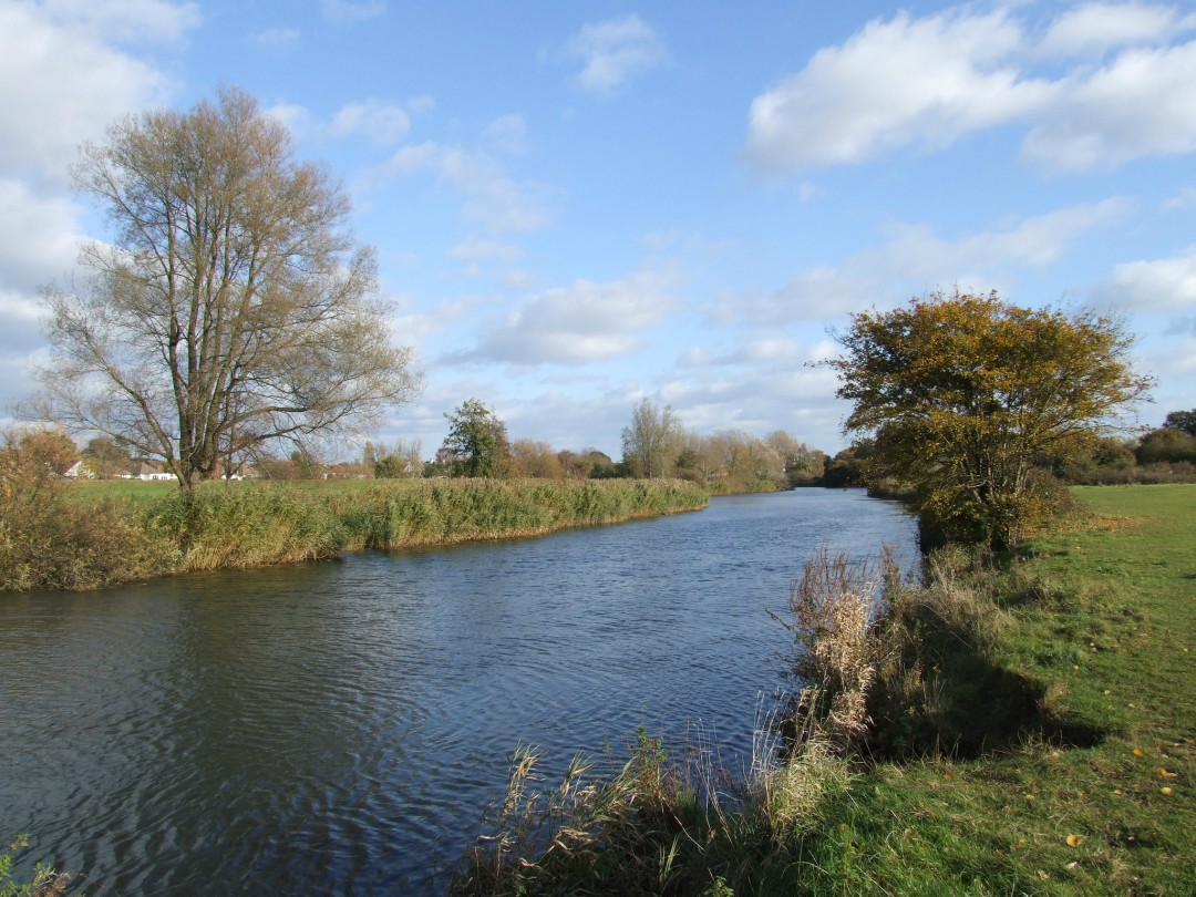 Bournemouth's Stour Valley river and grassland