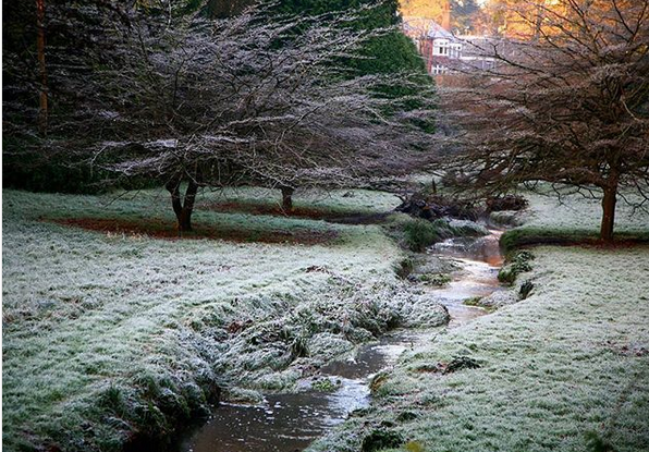 Frosty gardens in Bournemouth