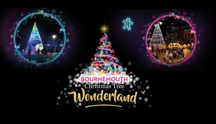 Bournemouth Christmas Tree Wonderland - Bournemouth