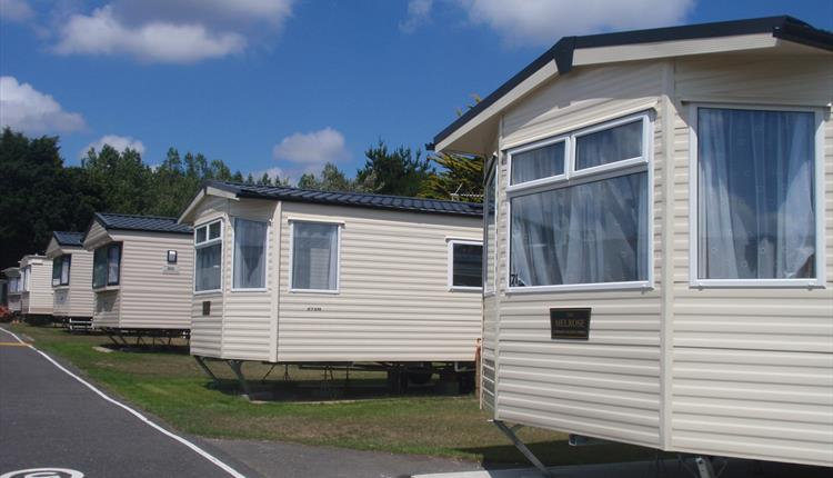 Downton Holiday Park Camping Caravan Near Bournemouth