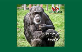 September for Seniors