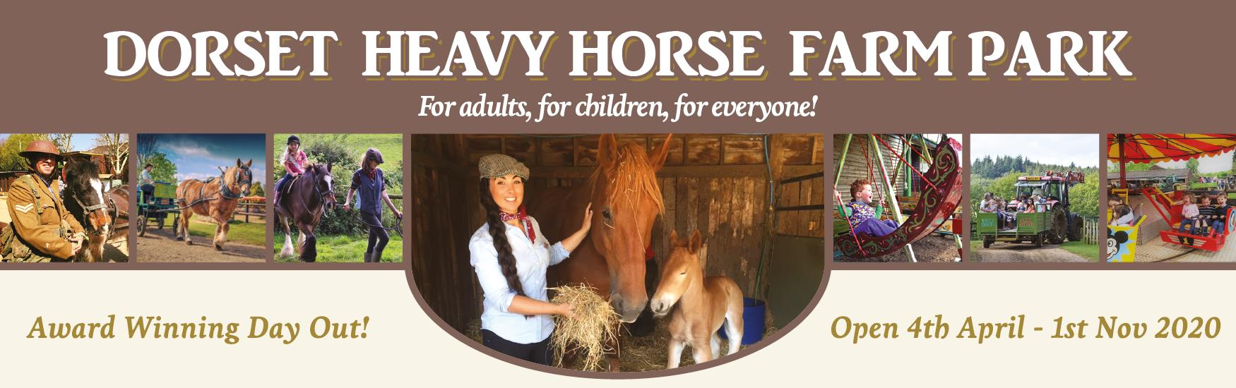 The Dorset Heavy Horse Farm Park is a multi-award-winning attraction located in the heart of Dorset.