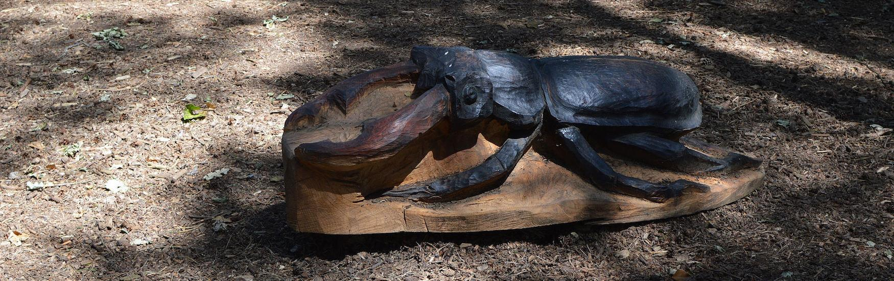A sculpture of a beetle on the Queens Park Trail