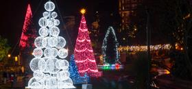 Visit the spectacular Bournemouth Christmas Tree Wonderland until 2nd January 2019 |
