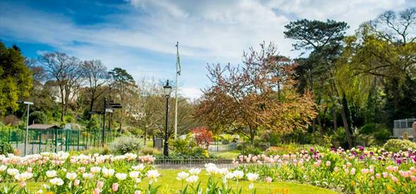 Flowers blooming in Boscombe gardens