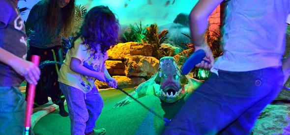 oasis fun crocodile