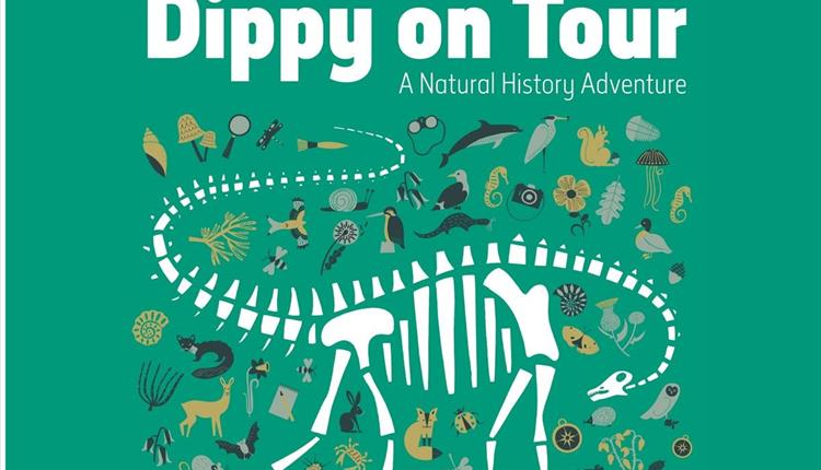 Dippy On Tour