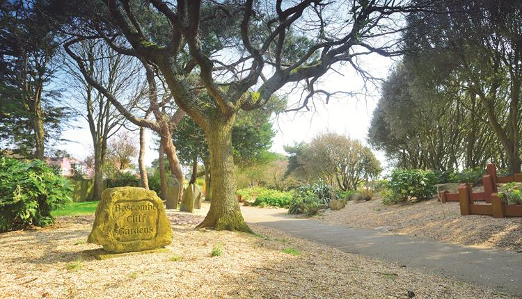 Sunny views of Boscombe cliff gardens